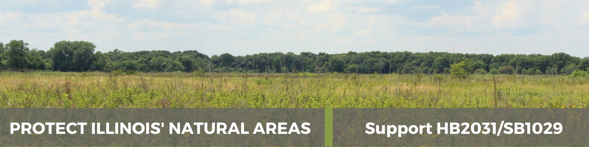 Support Illinois' Natural Areas